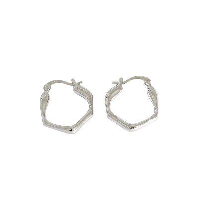 Fashion Irregular Geometry 925 Sterling Silver Hoop Earrings