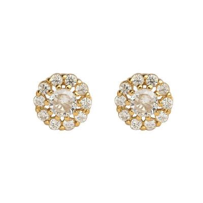 Beautiful CZ Flower 925 Sterling Silver Stud Earrings
