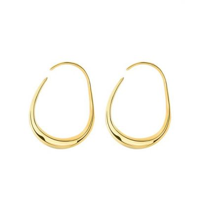 Geometry CZ Hollow Circle Irregular 925 Sterling Silver Hoop Earrings